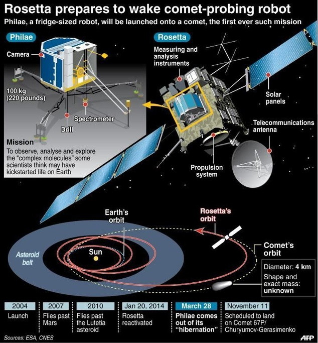 Cosmos 2.jpg